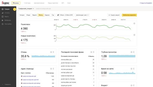 Яндекс метрика пример