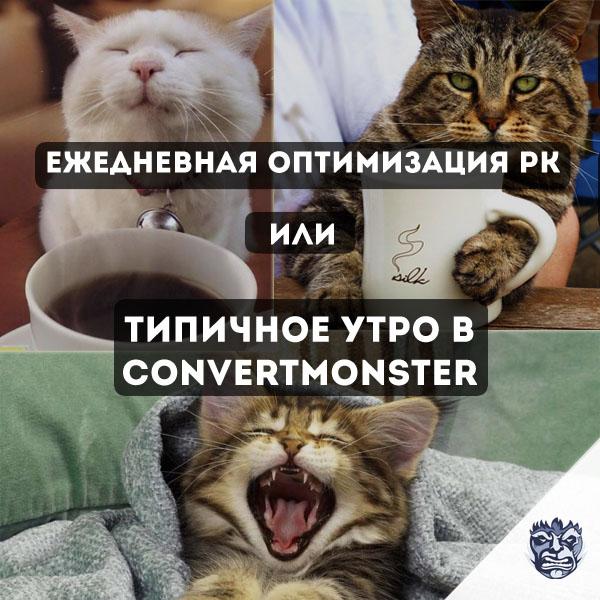 Оптимизация РК convertmonster
